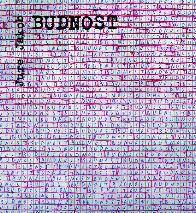 Jure Jakob: Budnost