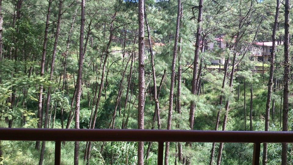Shillong z balkona (foto: Ivana Komel)